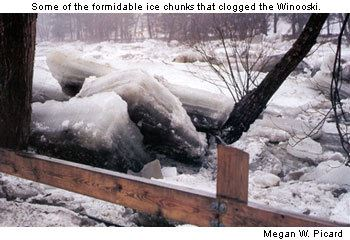 Some of the formidable ice chunks that clogged the Winooski River